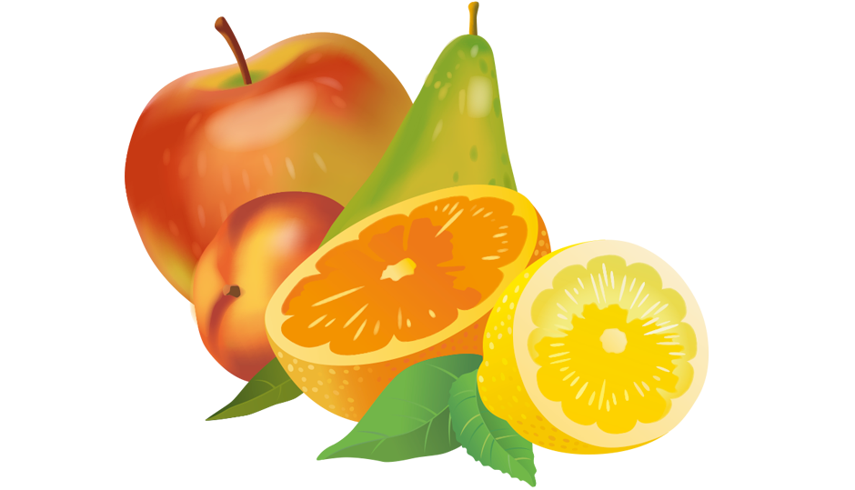 Fruit illustratie Snoei Vormgeving freelance illustraties freelance illustrator grafisch ontwerp bureau André Snoei